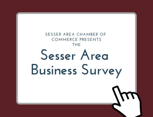 Sesser Area Business Survey